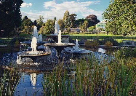 Cambridge Botanic Garden @ 13 Weeks Travel