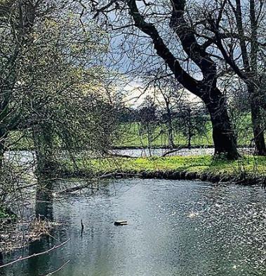 Wimpole Estate Cambridge @13 Weeks Travel
