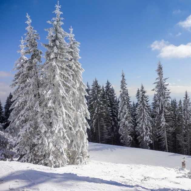 Top 10 Ski Resorts Europe 13 Weeks Travel